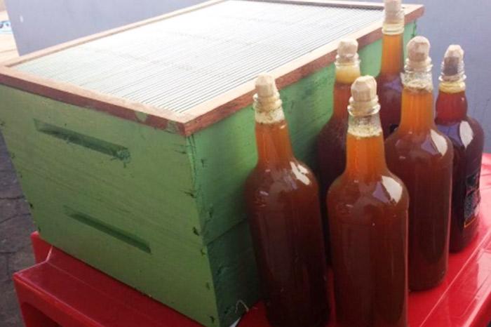 Produção de mel